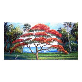 Royal Poinciana Tree Art Personalised Photo Card