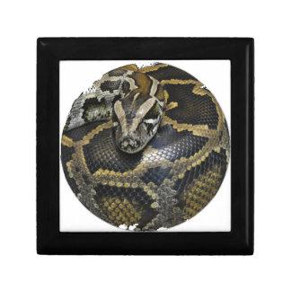 """""""Royal Python"""" Gift Box"""