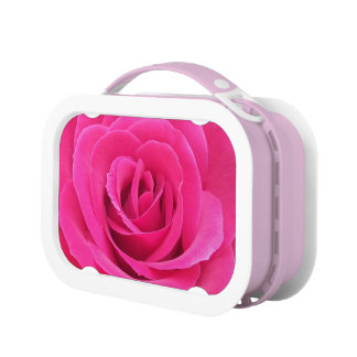Royal Red Rose Lunch Boxes