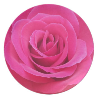 Royal Red Rose Party Plates
