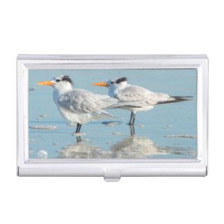 Royal Terns on beach Business Card Holder