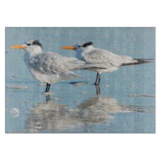 Royal Terns on beach Cutting Board