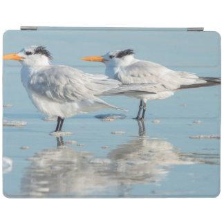 Royal Terns on beach iPad Cover