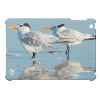 Royal Terns on beach iPad Mini Cover