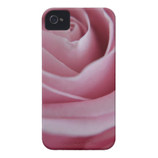 roze roos iPhone 4 cases