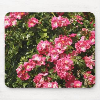 rozen muismat
