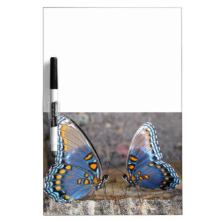 RSP Butterfly Dry Erase Board Message Board