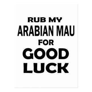 Rub my Arabian Mau for good luck Postcard