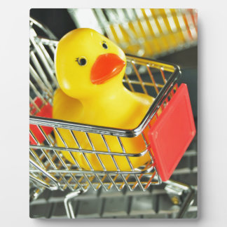 Rubber duck baby shopping concept plaque