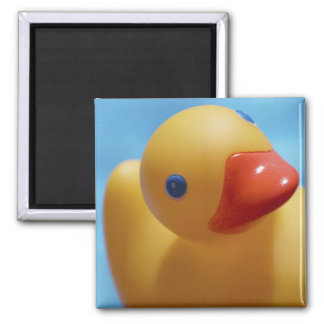 Rubber Duck Close-Up Square Magnet