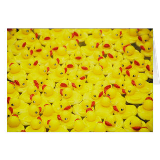Rubber Duckies Card