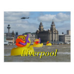 Rubber Ducks On The Mersey Post Card