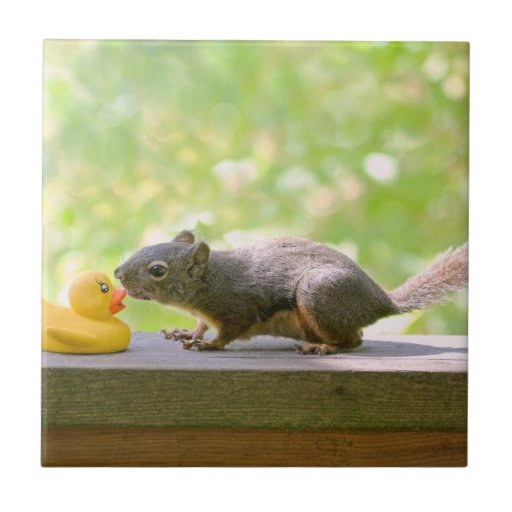 Rubber Ducky and Squirrel Kissing Tiles