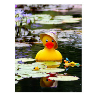 Rubber Ducky Postcard
