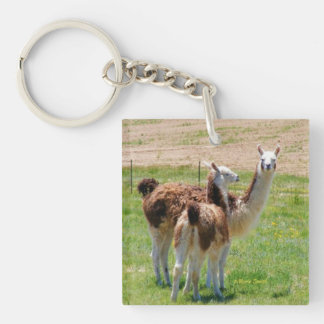 Ruby and Bleu 2 Single-Sided Square Acrylic Keychain