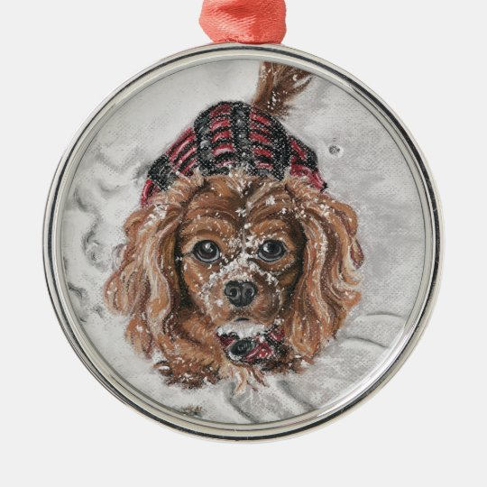 Ruby Cavalier King Charles Spaniel in the snow