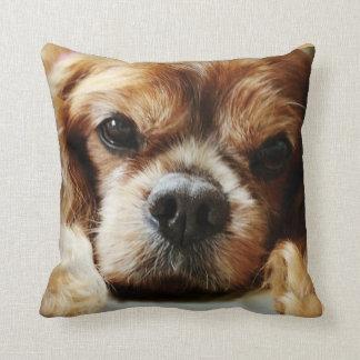 Ruby Cavalier Pillow 16x16
