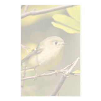 Ruby-crowned Kinglet Stationery Paper