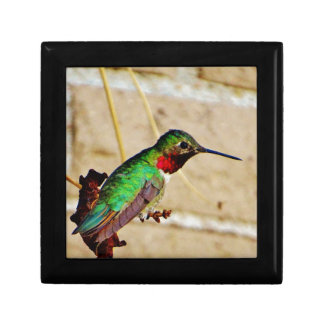 Ruby Green hummingbird Gift Box