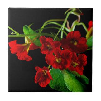 Ruby Red Nasturtium Tile