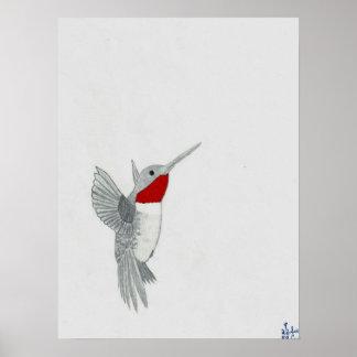 """Ruby Throat Hummingbird"" Poster  (18""x 24"")"