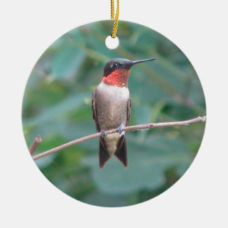 Ruby-throat Hummingbird Round Ceramic Decoration