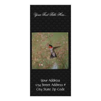 Ruby Throated Humming Bird Rack Card