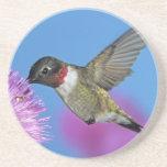 Ruby-throated Hummingbird, Archilochus 4 Beverage Coaster