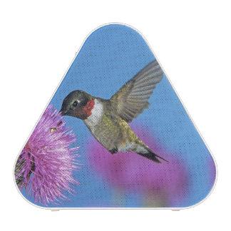 Ruby-throated Hummingbird, Archilochus 4 Bluetooth Speaker