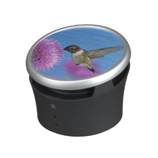 Ruby-throated Hummingbird, Archilochus 4 Speaker