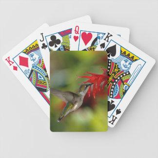 Ruby-Throated Hummingbird Archilochus Colubris Bicycle Poker Deck