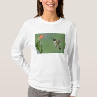 Ruby-throated Hummingbird, Archilochus T-Shirt