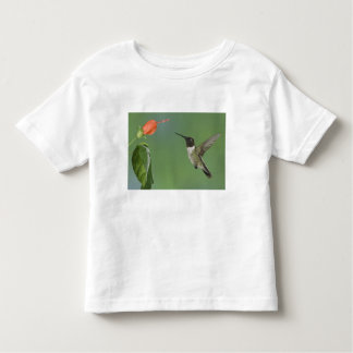 Ruby-throated Hummingbird, Archilochus Toddler T-Shirt