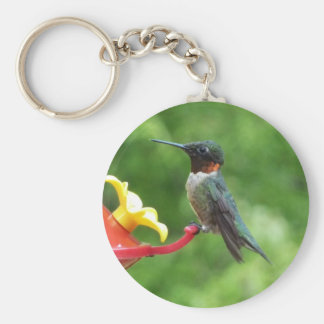 Ruby-Throated Hummingbird Bird Photography Basic Round Button Key Ring