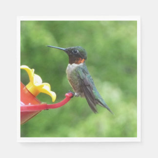 Ruby-Throated Hummingbird Bird Photography Disposable Napkins