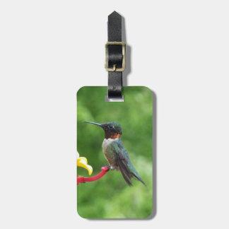 Ruby-Throated Hummingbird Bird Photography Luggage Tag