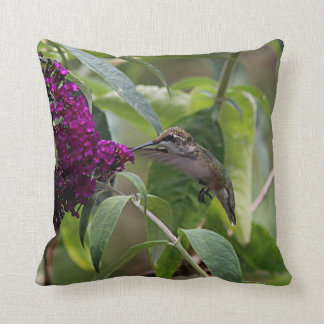 Ruby-throated hummingbird cushion