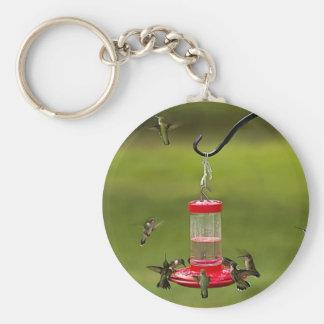 Ruby Throated Hummingbird Feeding Frenzy Key Chain