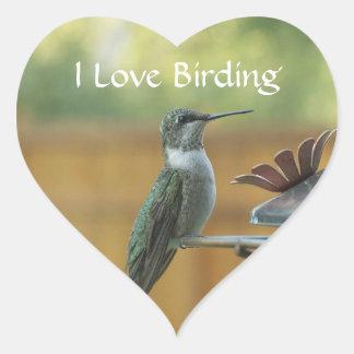 Ruby Throated Hummingbird Heart Sticker