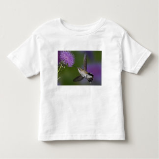 Ruby-throated hummingbird in flight at thistle 2 toddler T-Shirt