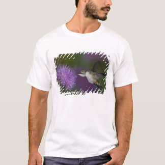 Ruby-throated hummingbird in flight at thistle T-Shirt