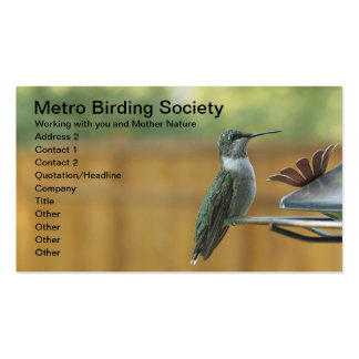 Ruby Throated Hummingbird Pack Of Standard Business Cards