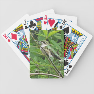 Ruby-Throated Hummingbird Photography Bicycle Card Deck