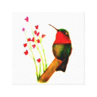 Ruby-Throated Hummingbird Stretched Canvas Print