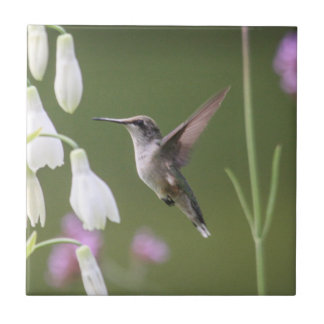 Ruby-throated Hummingbird Tile