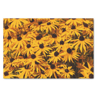 Rudbeckia Fulgida / Orange Coneflower Tissue Paper