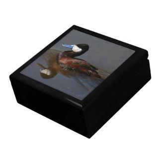 Ruddy Duck Gift Box