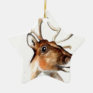 Rudolf the red nosed reindeer ceramic star decoration