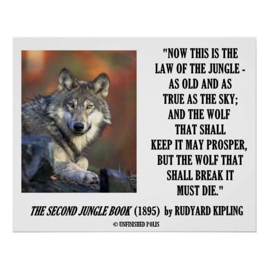 Rudyard Kipling Law Of The Jungle Prosper Poster