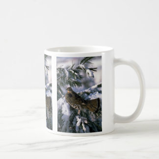 Ruffed grouse perched in a snowy tree mugs